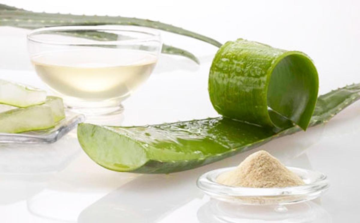 Как заморозить сок алоэ в домашних условиях