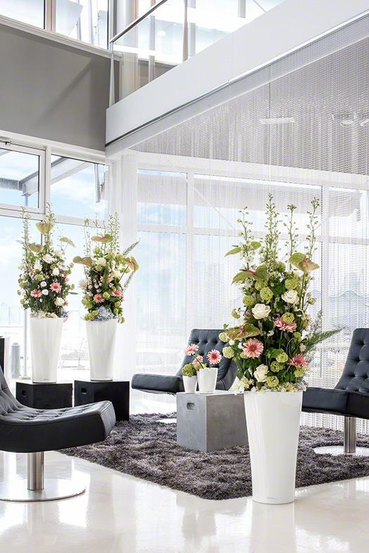 lechuza delta. Black Bedroom Furniture Sets. Home Design Ideas