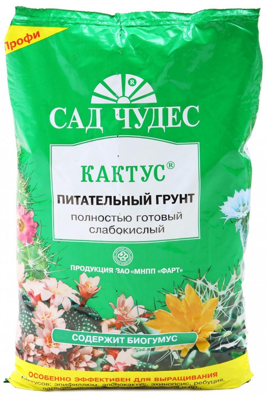 Как сделать грунт для кактусов в домашних условиях