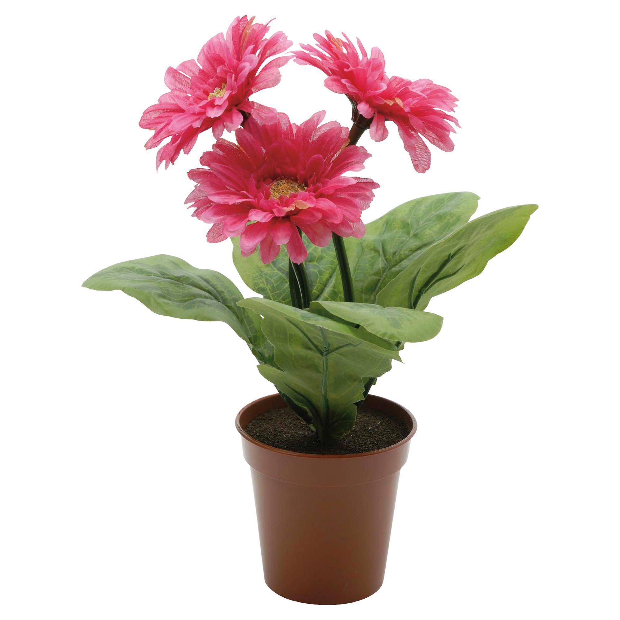 Цветок 46