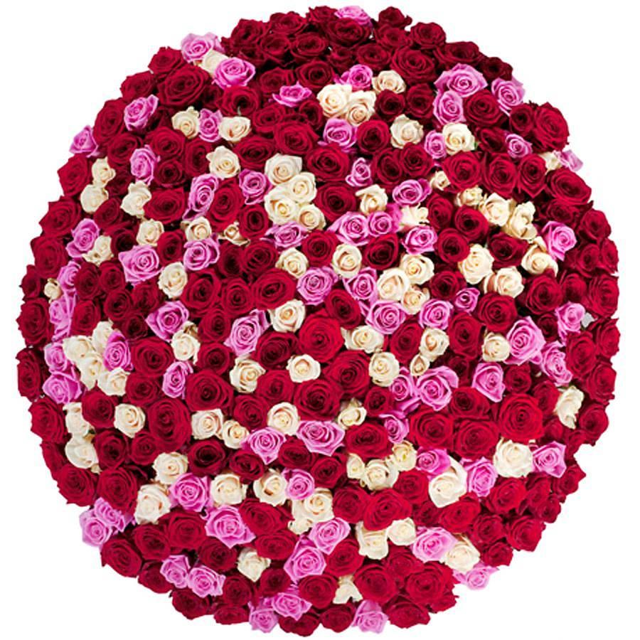 Букет из роз 501 штука, цветов херсон