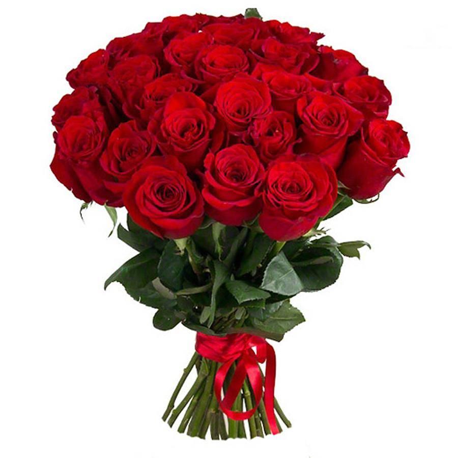 бирон картинки розы красные букеты большие и красивые тоже понимали, разобрались