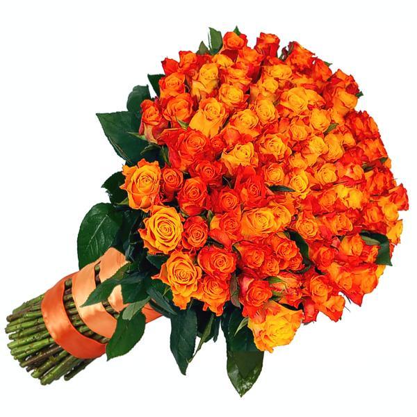 большое столько оранжевые розы букет фото больше